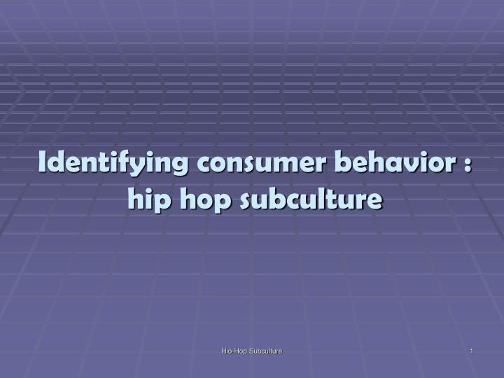 Identifying consumer behavior : hip hop subculture
