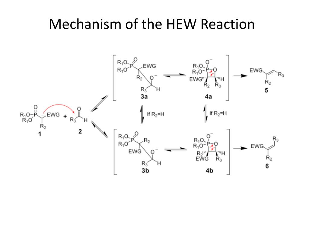 Mechanism of the HEW Reaction