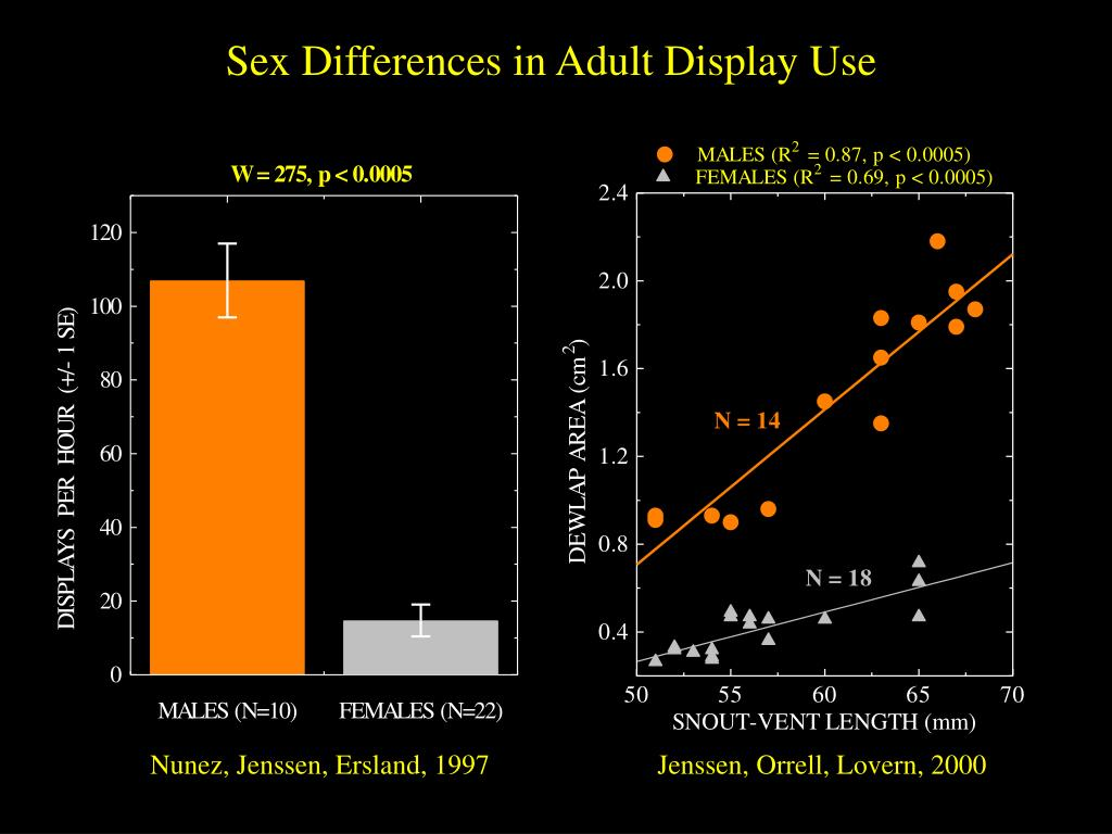 Sex Differences in Adult Display Use