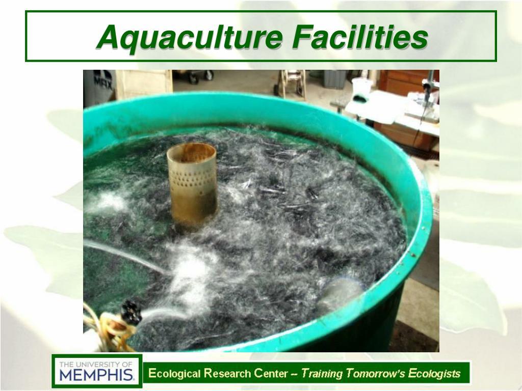 Aquaculture Facilities