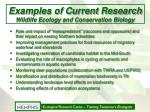 examples of current research wildlife ecology and conservation biology
