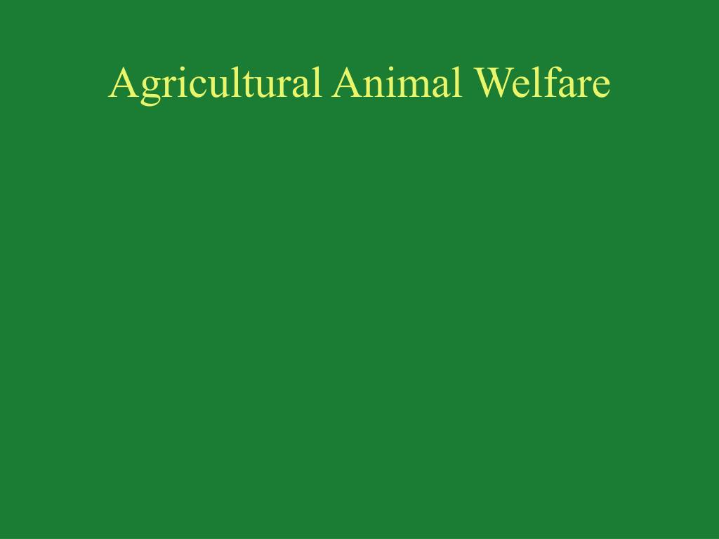 Agricultural Animal Welfare