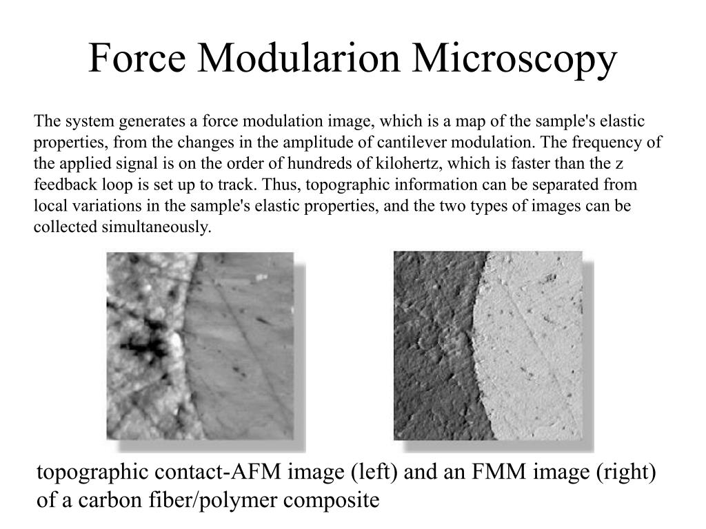 Force Modularion Microscopy