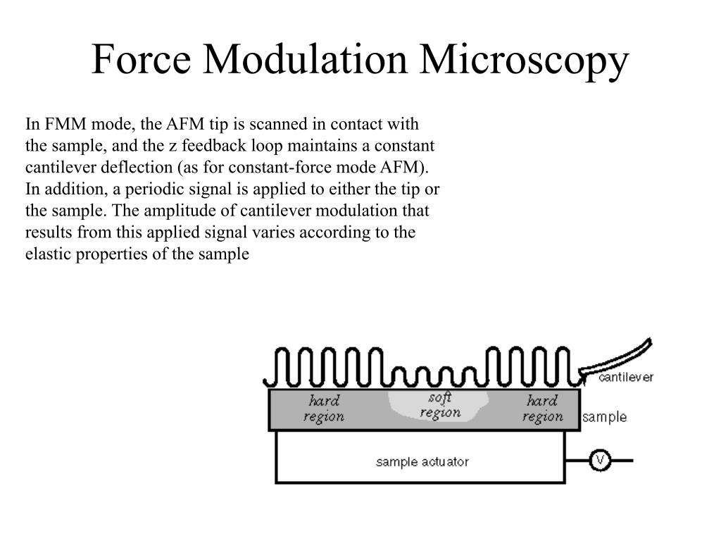 Force Modulation Microscopy