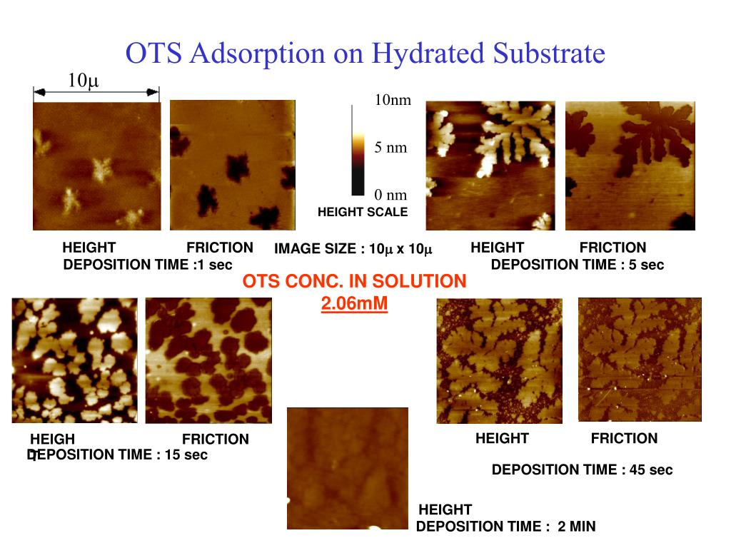 OTS Adsorption on Hydrated Substrate