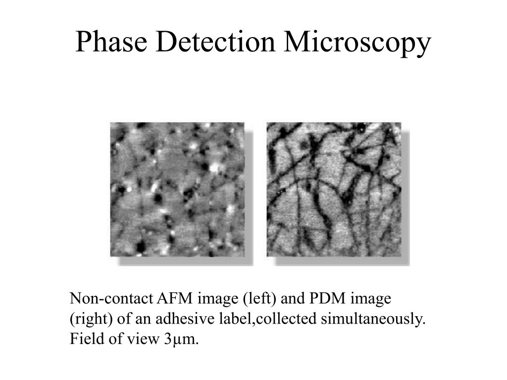 Phase Detection Microscopy