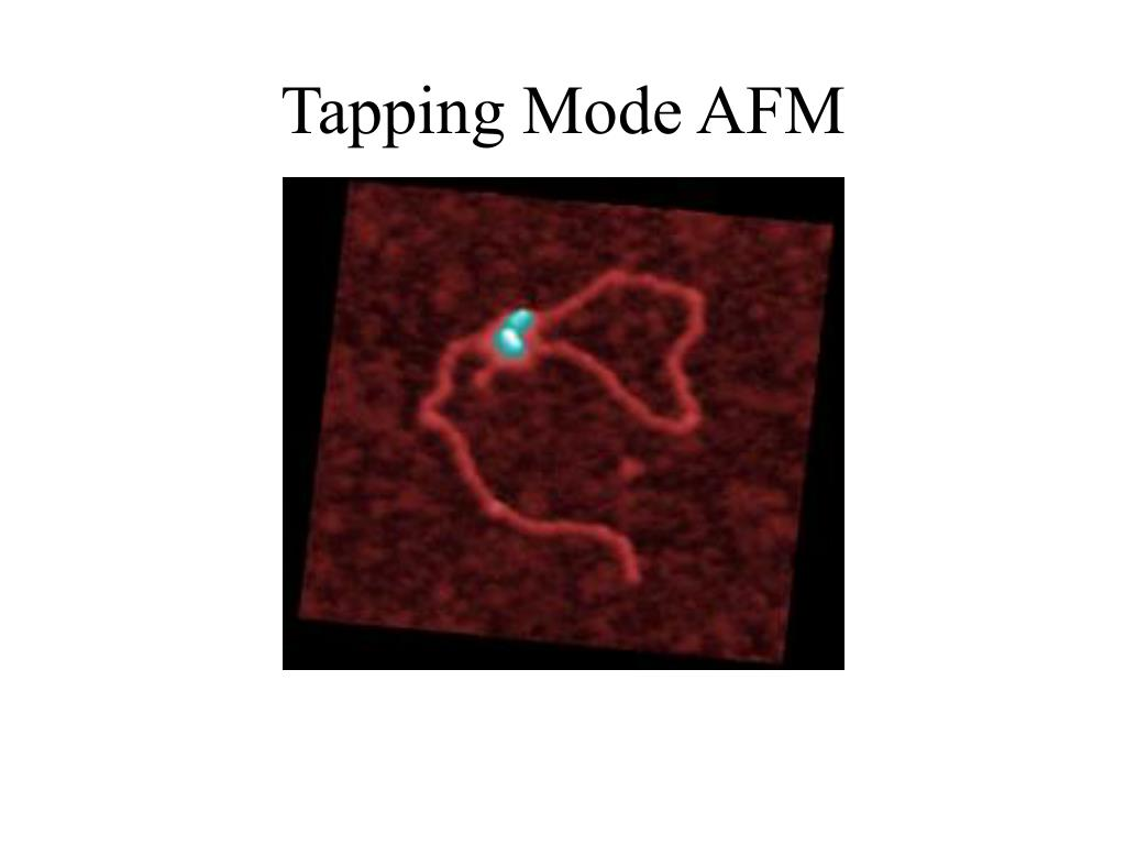 Tapping Mode AFM