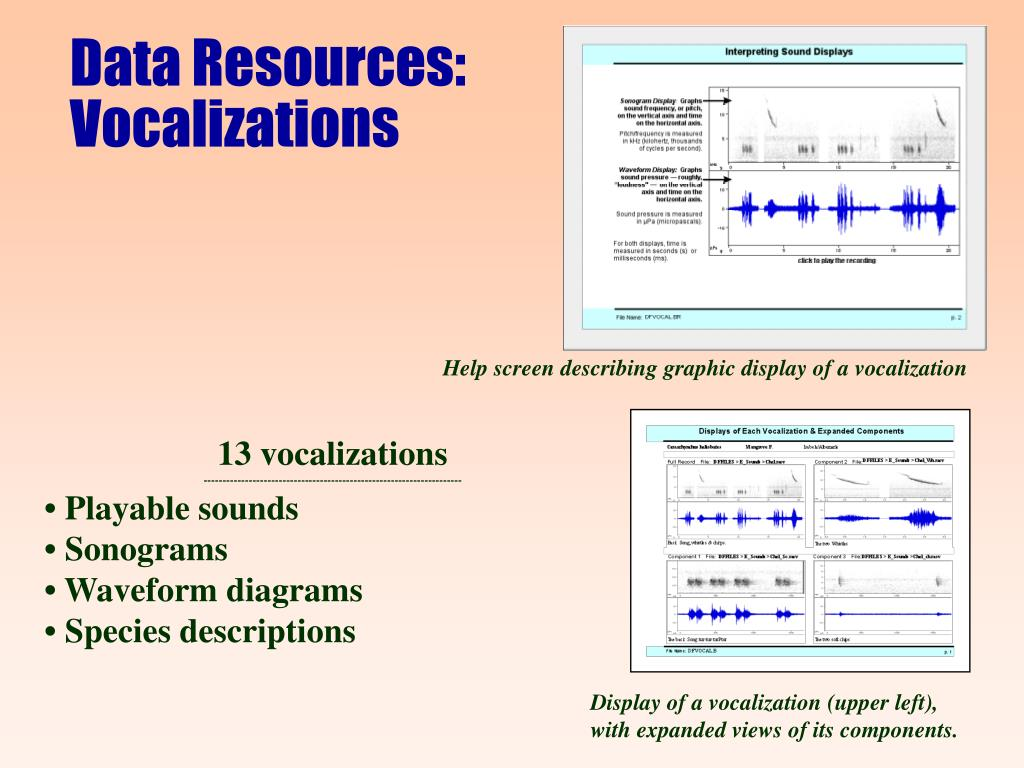 Data Resources: