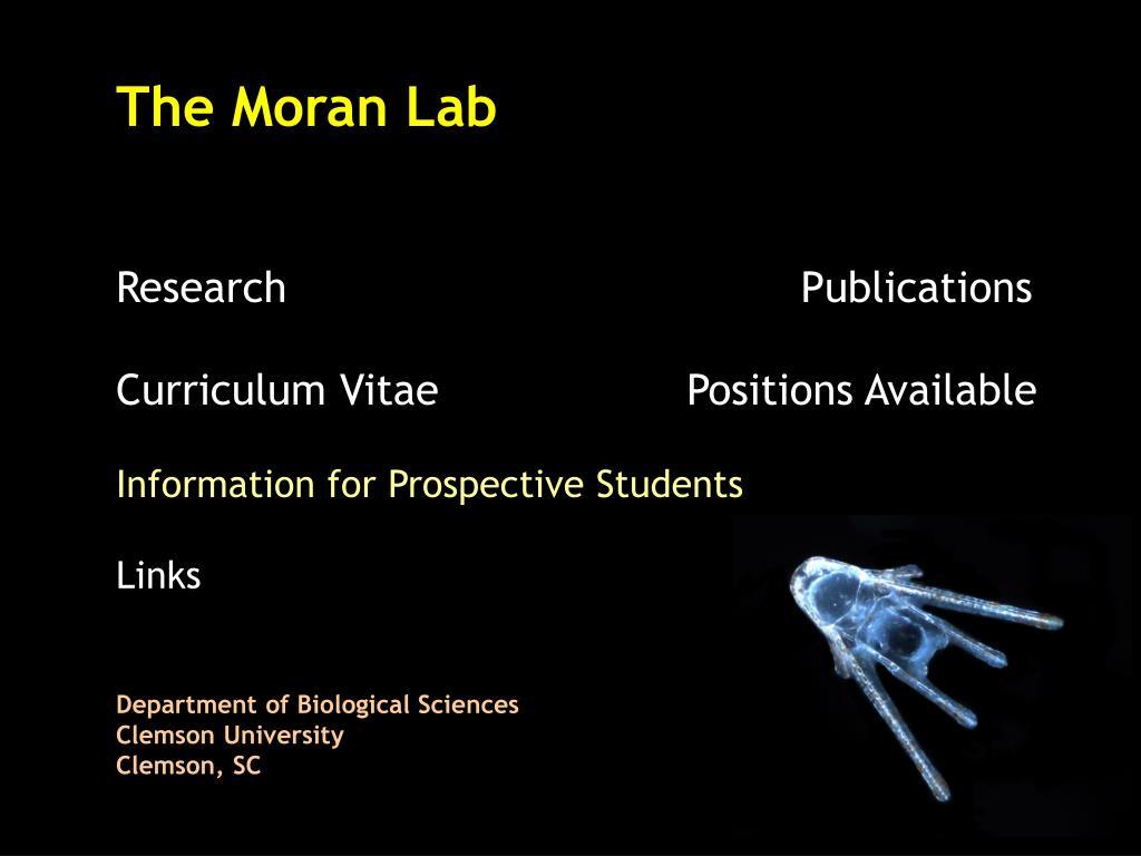 The Moran Lab