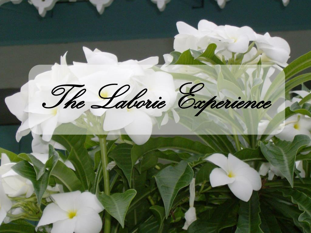 The Laborie Experience