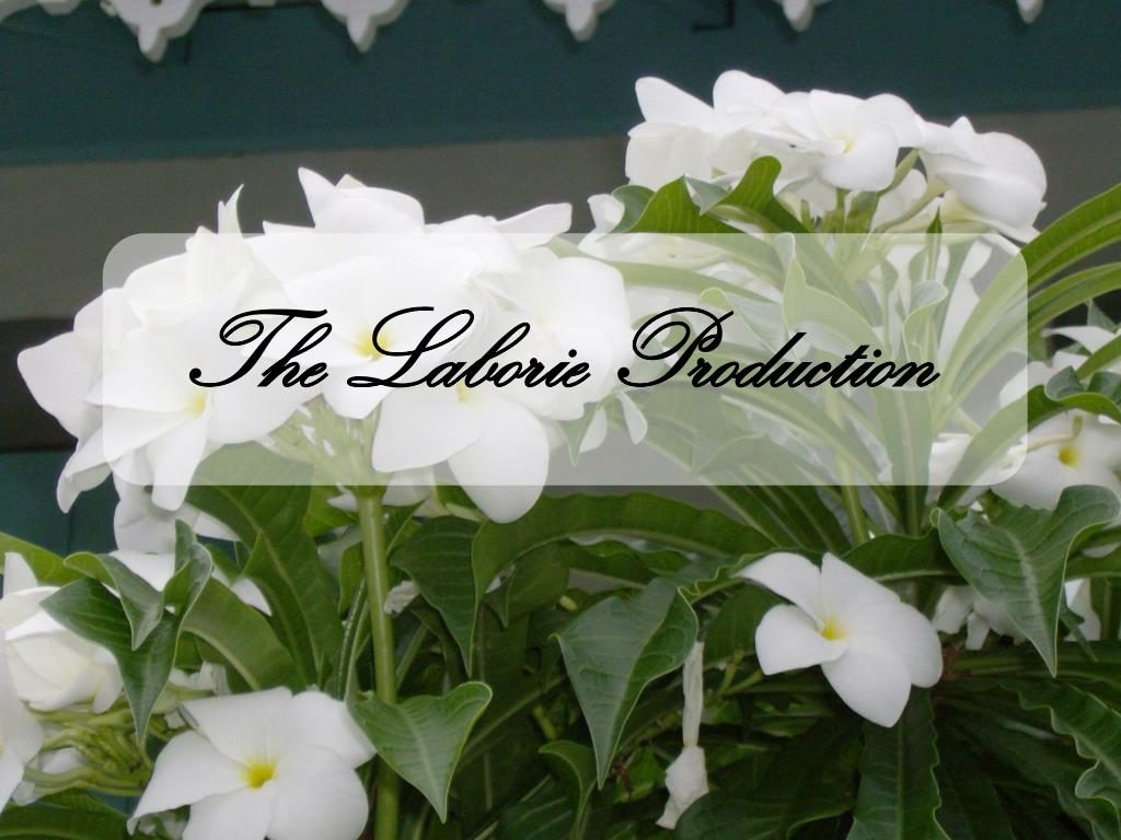 The Laborie Production