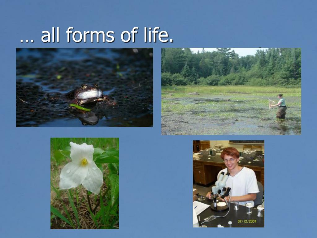 … all forms of life.