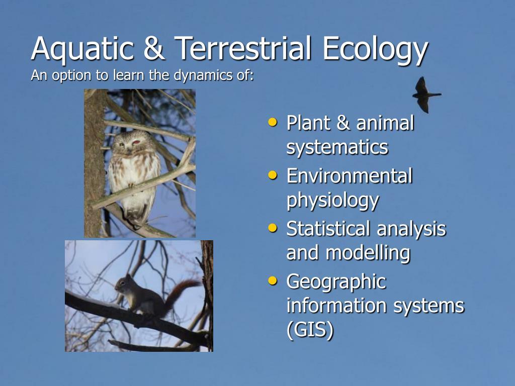Aquatic & Terrestrial Ecology