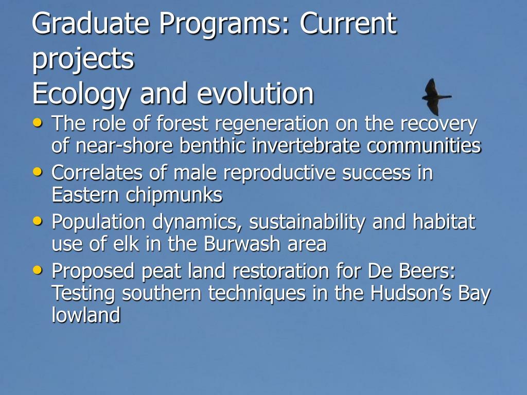 Graduate Programs: Current projects