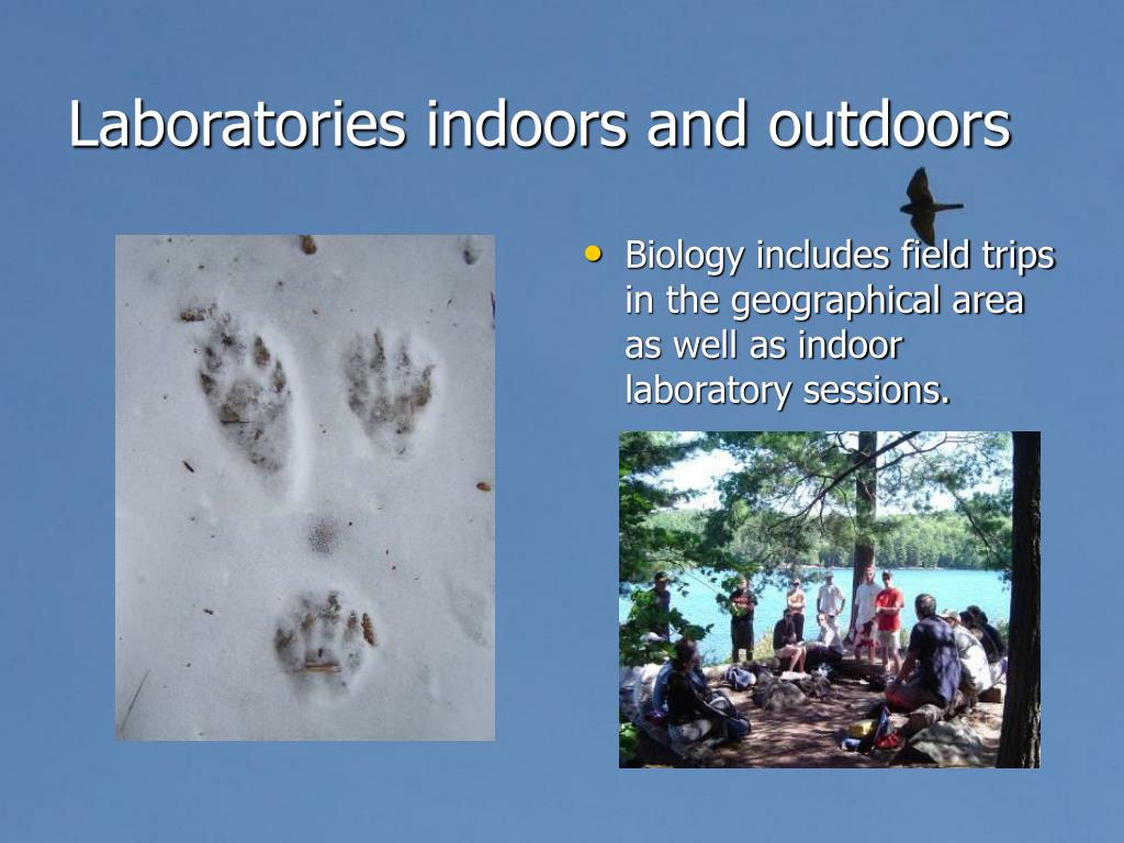 Laboratories indoors and outdoors