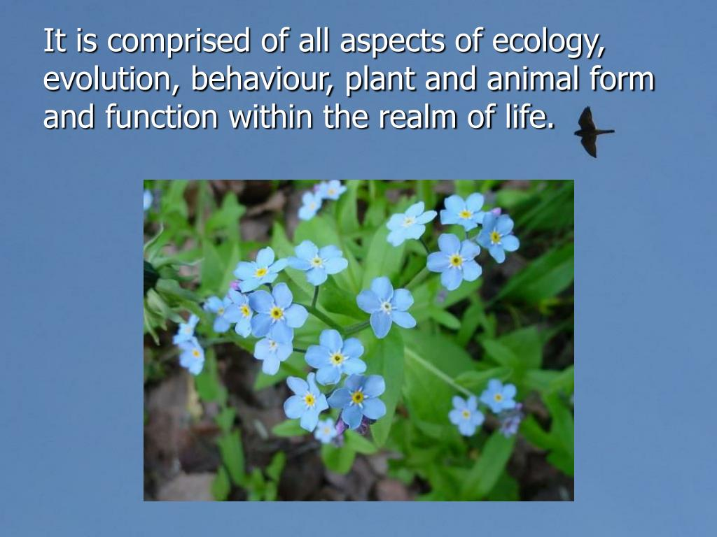 It is comprised of all aspects of ecology, evolution, behaviour, plant and animal form and function within the realm of life.