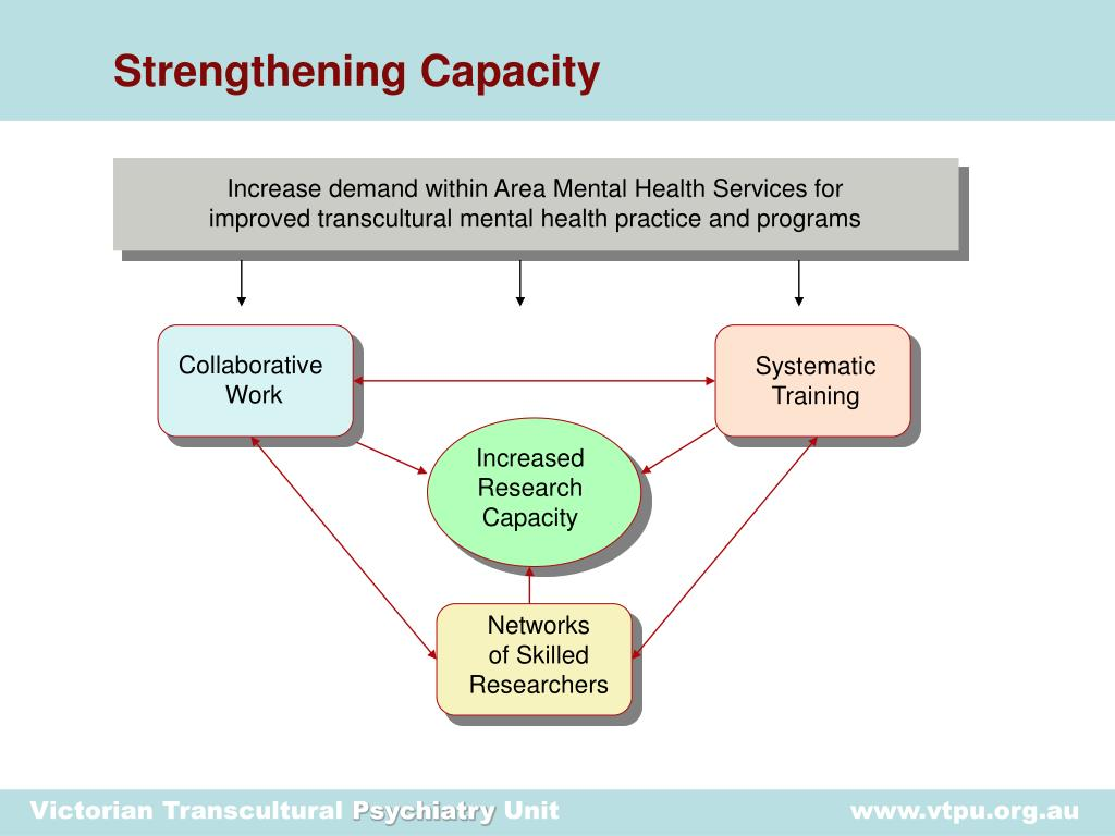 Strengthening Capacity