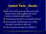 intern year goals