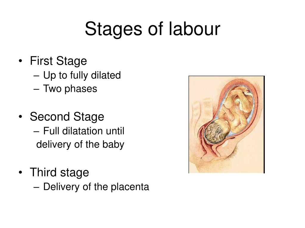 Stages of labour