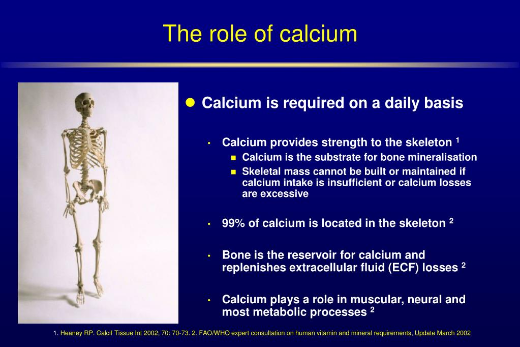 Calcium is required on a daily basis