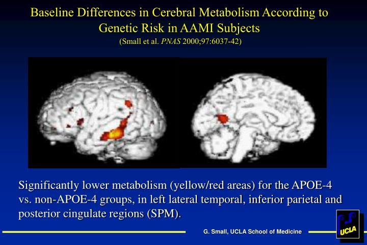 Baseline Differences in Cerebral Metabolism According to Genetic Risk in AAMI Subjects