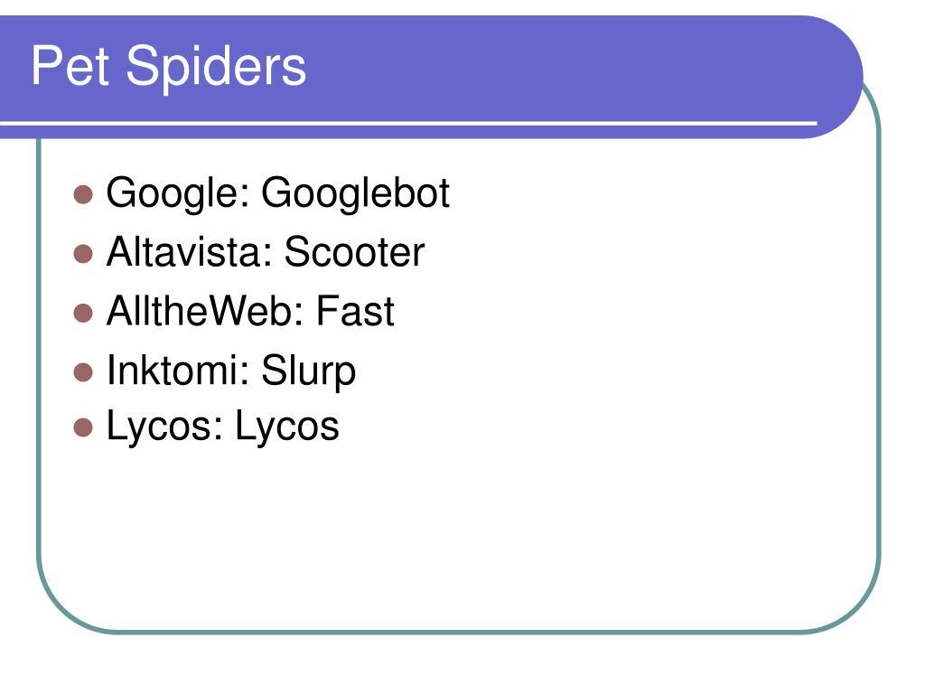 Pet Spiders