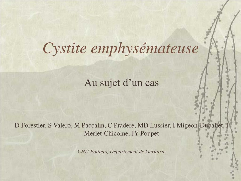 Cystite emphysémateuse
