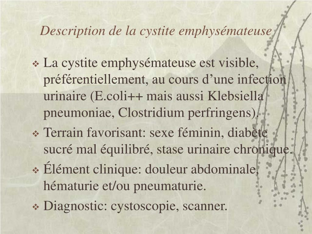 Description de la cystite emphysémateuse