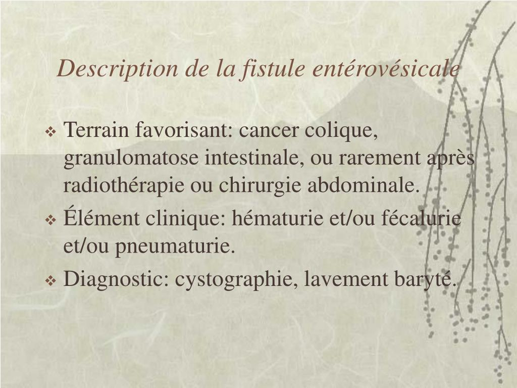 Description de la fistule entérovésicale