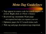 meta tag guidelines