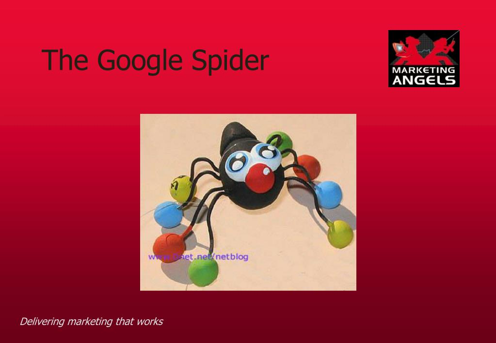 The Google Spider