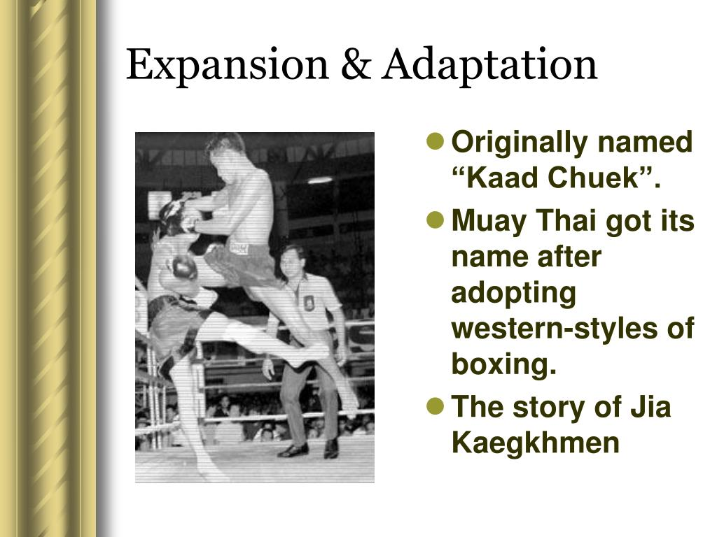 Expansion & Adaptation