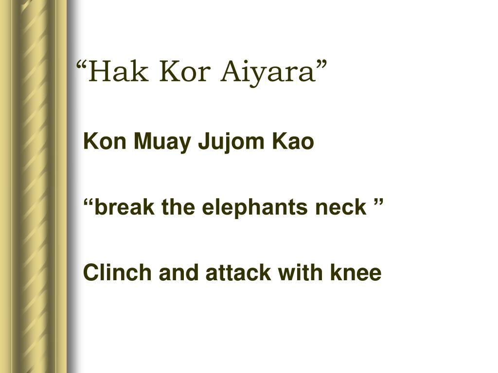 Kon Muay Jujom Kao