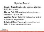 spider traps