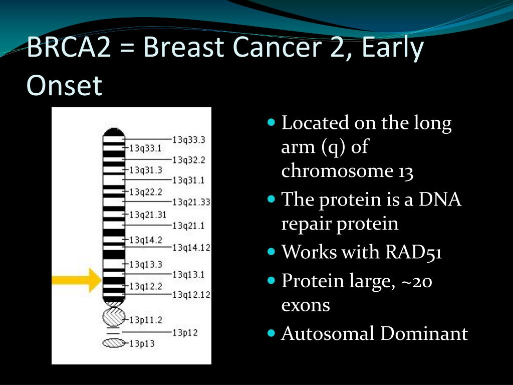 BRCA2 = Breast Cancer 2, Early Onset