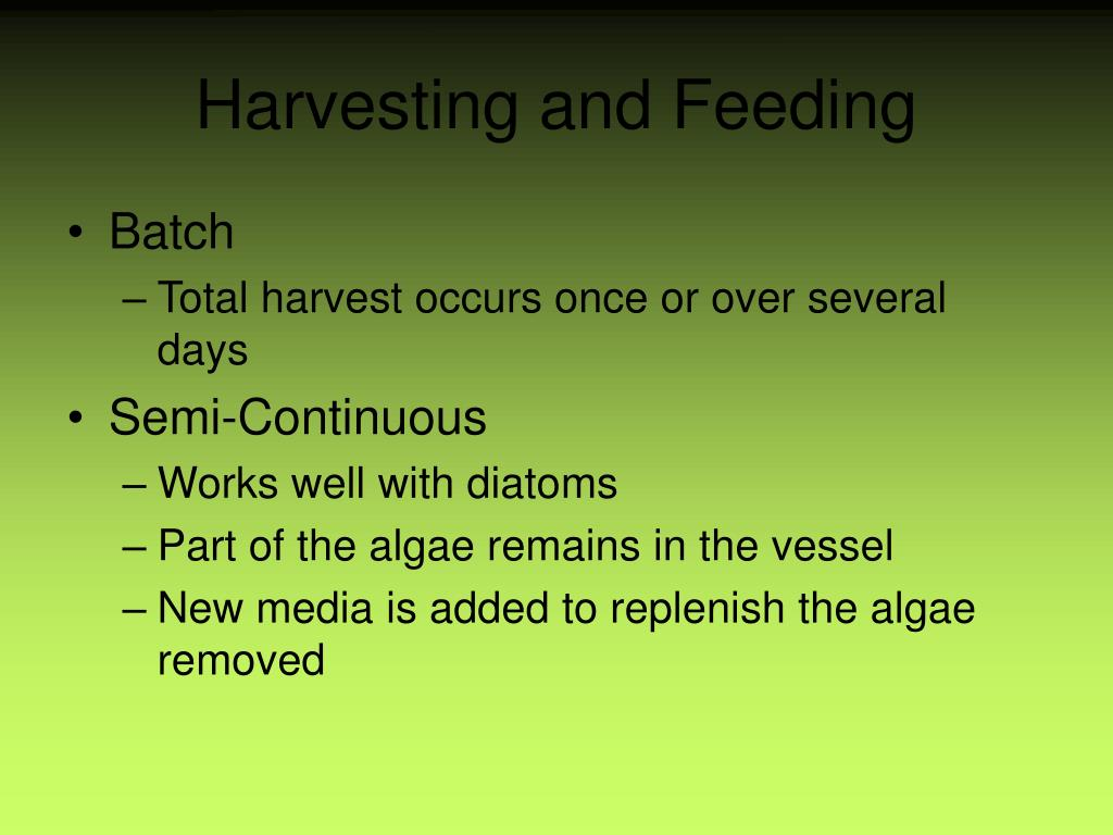 Harvesting and Feeding