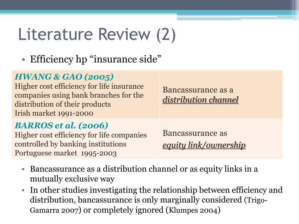 Literature Review (2)