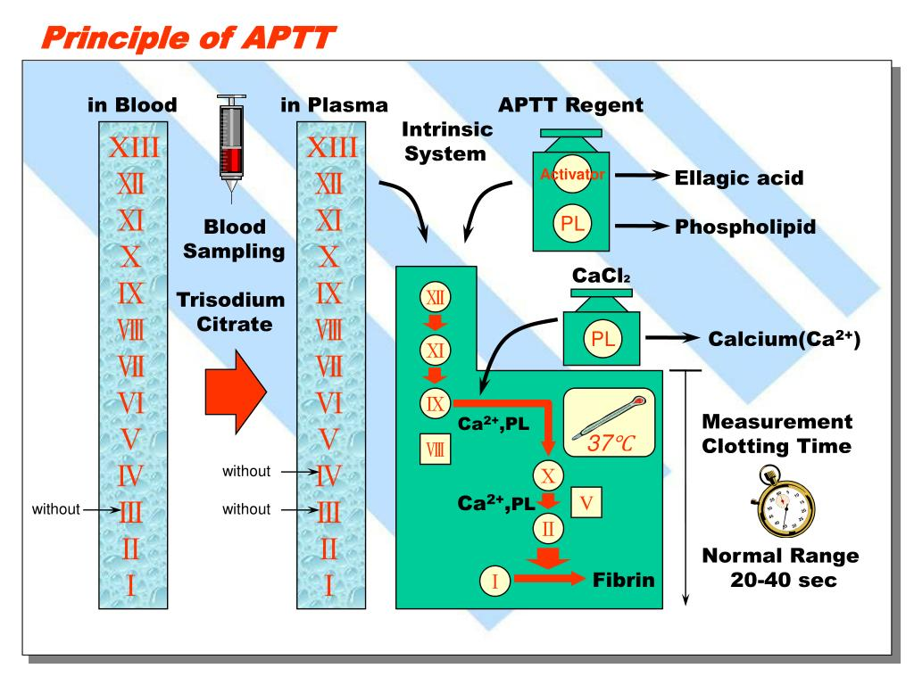 Principle of APTT
