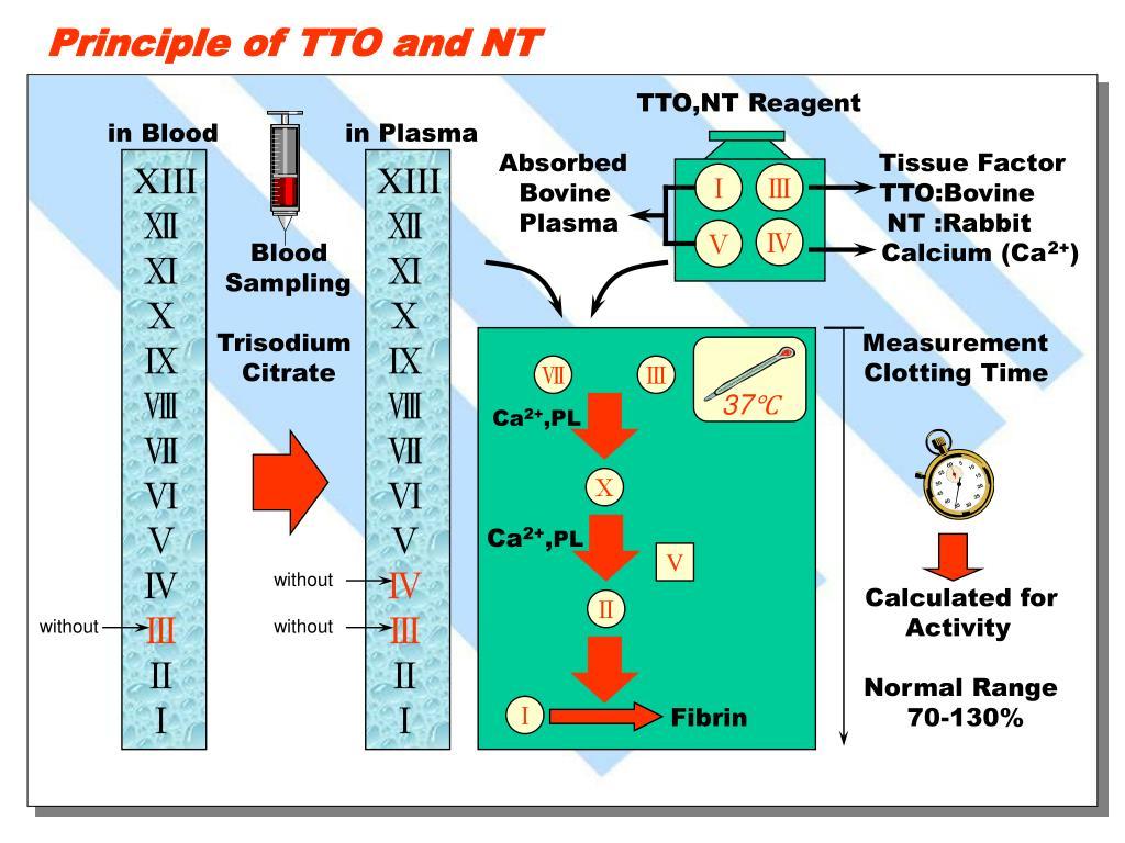 TTO,NT Reagent