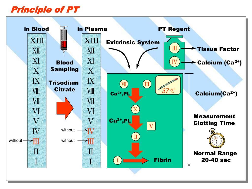 Principle of PT
