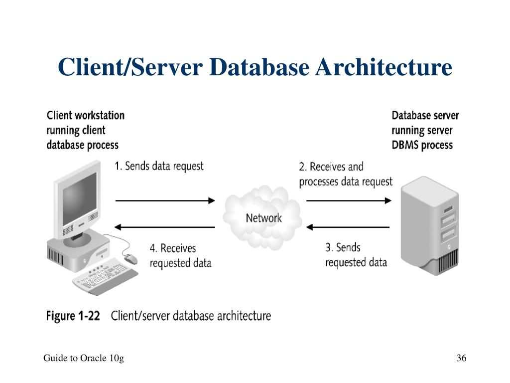 Client/Server Database Architecture