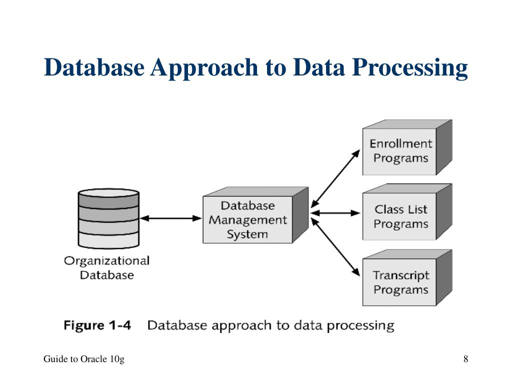 Database Approach to Data Processing