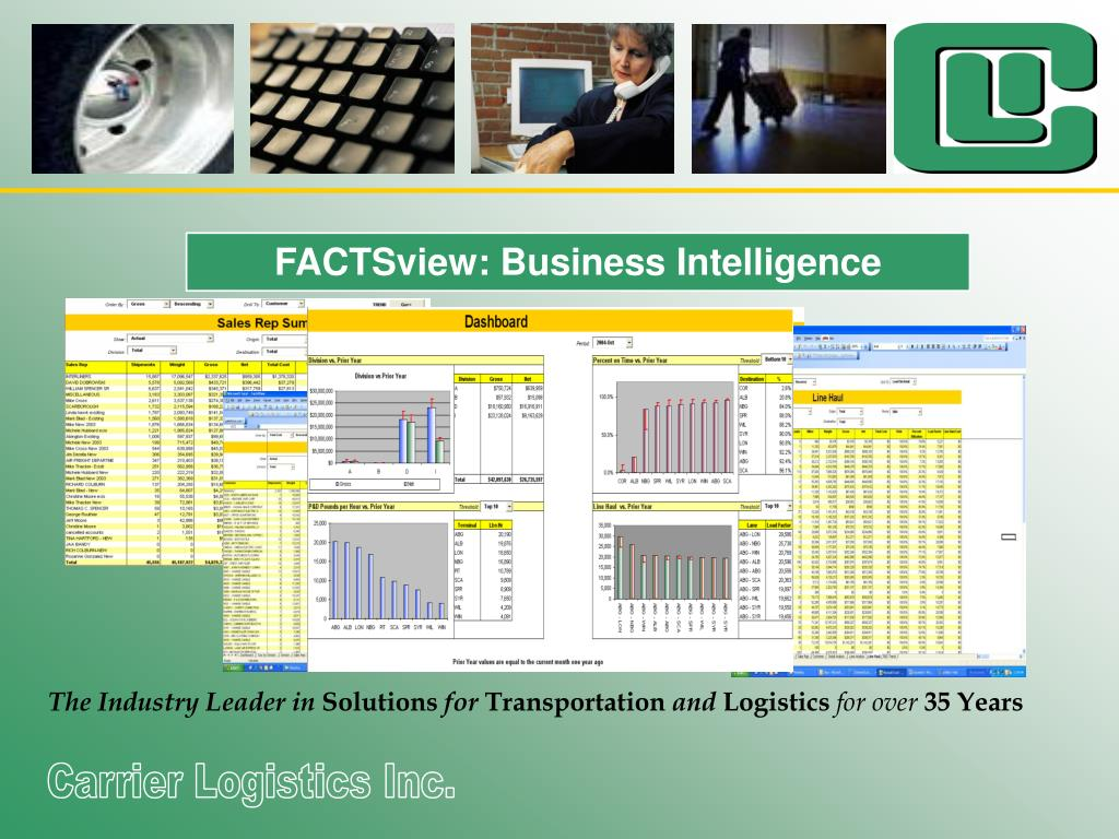 FACTSview: Business Intelligence