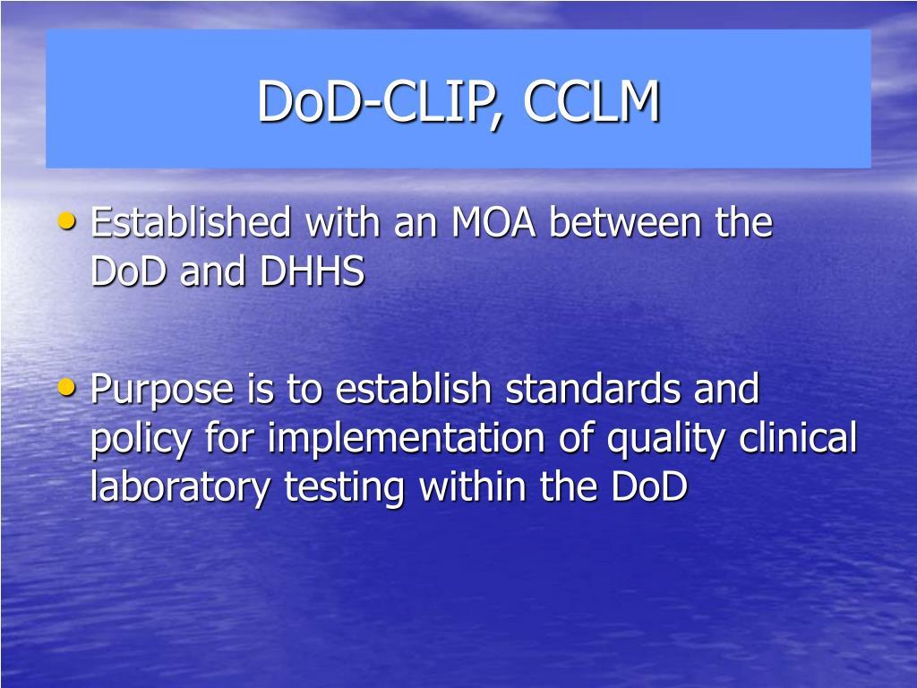 DoD-CLIP, CCLM