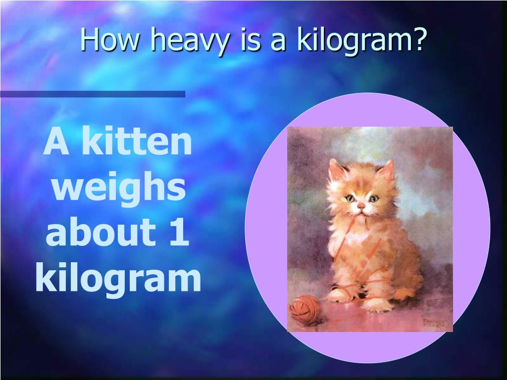 How heavy is a kilogram?