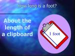 how long is a foot