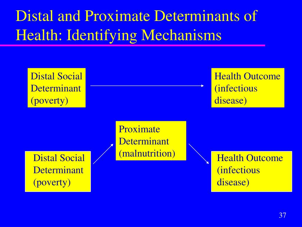 Distal Social Determinant (poverty)