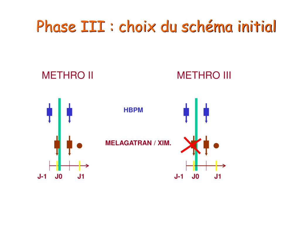 Phase III : choix du schéma initial