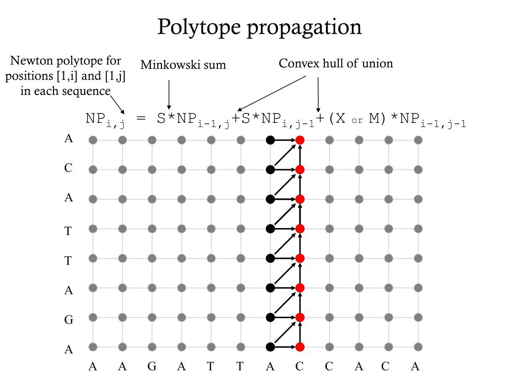 Newton polytope for