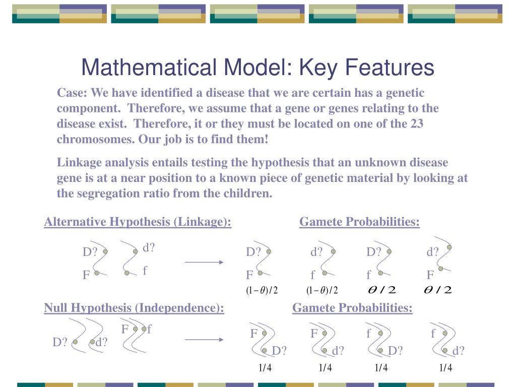 Mathematical Model: Key Features